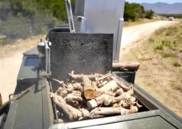 Biomass beneficiation